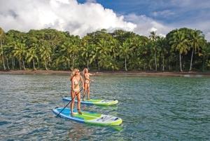 singer island paddle boards=